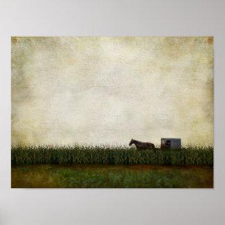 Pôster Cavalo e carrinho de Amish