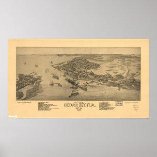 Poster Cedro Florida chave 1884 mapas panorâmicos