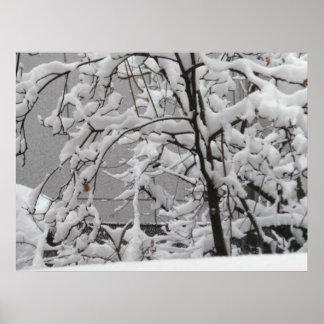 Poster Cena bonita do inverno