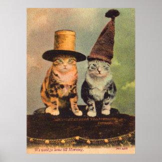 Pôster cerca de 1900 gatos nos chapéus RPPC