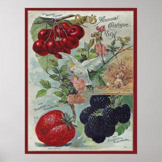 Pôster cobrir do catálogo de semente do vintage