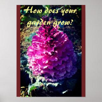 Pôster Como seu jardim cresce?