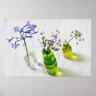 Pôster Composição floral