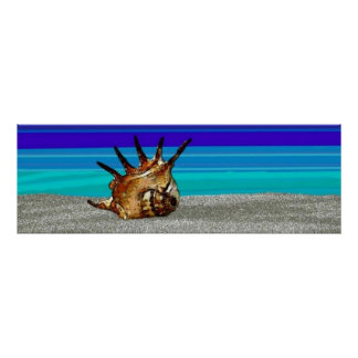 Poster Conch