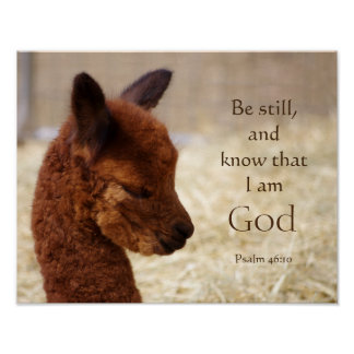 Poster da alpaca do 46:10 do salmo