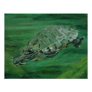 Poster da angra da tartaruga