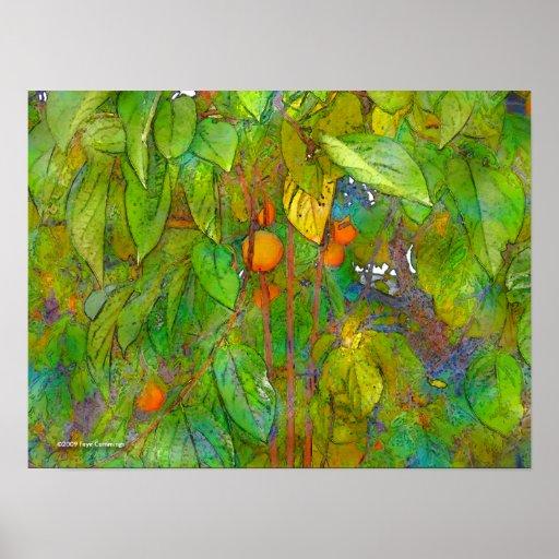 Poster da árvore de caqui