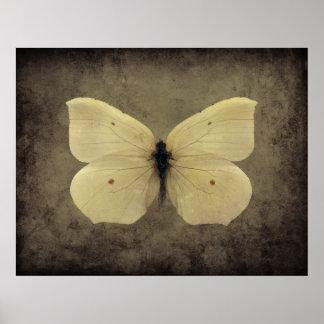 Poster da borboleta do sepia do vintage