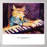 poster da cor do gato do teclado