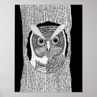 Poster da coruja da árvore