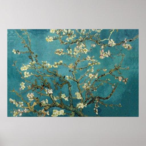 Poster da flor da amêndoa