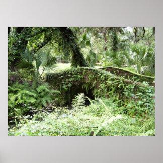 Poster da floresta da ponte da pedra da floresta