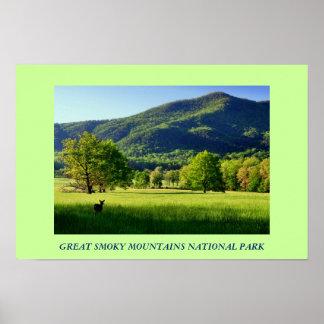 Poster da foto do parque nacional de Great Smoky M