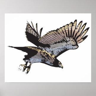 Poster da ilustração do falcão