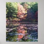 Poster da paisagem do outono