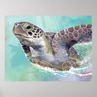 Poster da tartaruga de mar verde