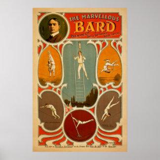 Poster das artes de palco do vintage