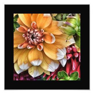 Poster das flores amarelas e brancas impressão fotográficas