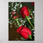 Poster das rosas vermelhas