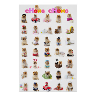 Poster de Chong Chong