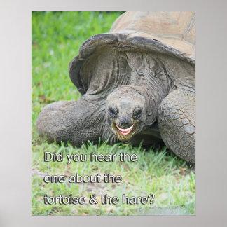 Poster de sorriso da tartaruga