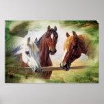 Poster de três cavalos