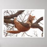 Poster de um gato aproximadamente a cair de uma ár
