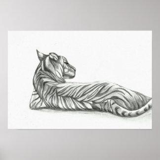 Pôster Desenho de descanso do tigre