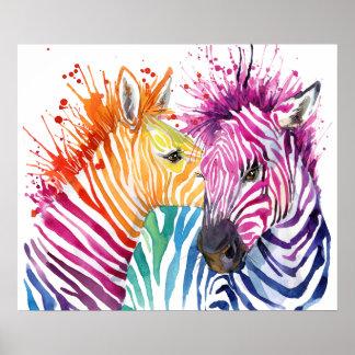 Poster do arco-íris da zebra