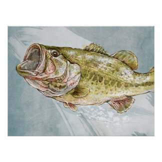 Poster do baixo Largemouth