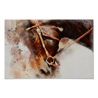 Poster do cavalo da aguarela pôster