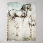 Poster do cavalo de da Vinci