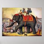 Poster do circo do vintage - executando o elefante