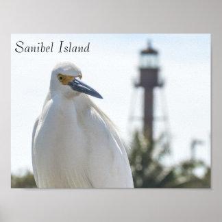 Poster do farol e do pássaro da ilha de Sanibel