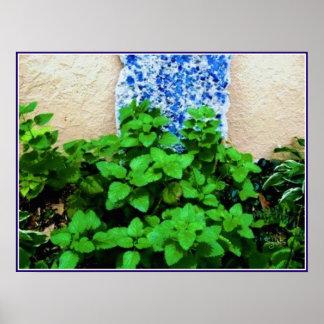 Poster do jardim de erva do erva-cidreira