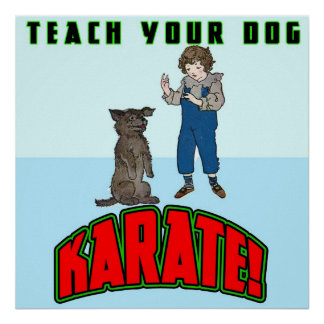 Poster do karaté 2 do cão