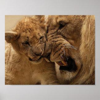 Poster do leão do pai e do filho