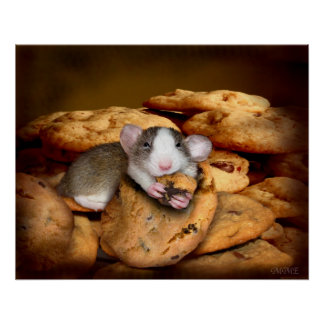 Poster do monstro do biscoito