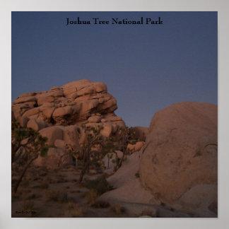 Poster do parque nacional de árvore de Joshua Pôster