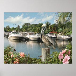 "Poster Do ""poster da angra pelicano"" de Alan Giana"