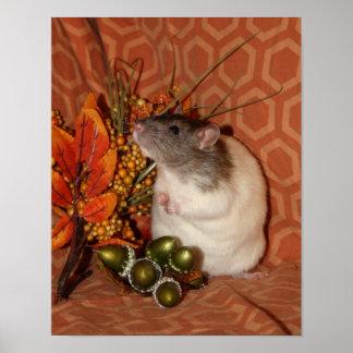 Poster do rato do outono