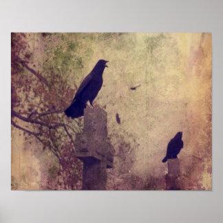 Poster Dois corvos muito legal