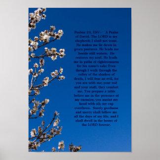 Poster dos salmos 23