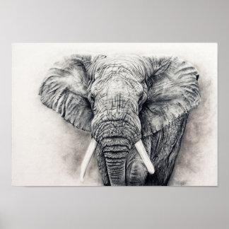 Pôster Elefante no carvão vegetal