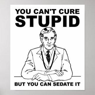 Poster engraçado estúpido calmo pôster