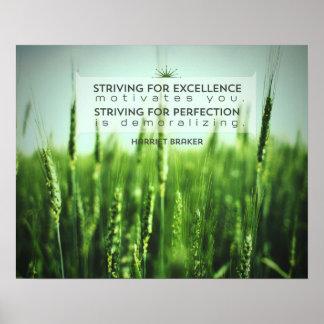 Pôster Esforço para a excelência