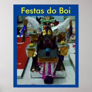 Poster Festa do Boi Pôster