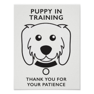 Pôster Filhote de cachorro no sinal do treinamento