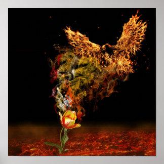 Poster Flor de Phoenix