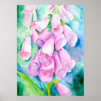 Pôster Foxgloves cor-de-rosa da aguarela